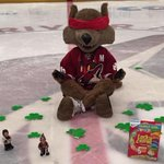6 hours until the 2015 #NHLDraft Lottery on NBC! @HowlerCoyote is ready. Where will you be watching tonight at 5? http://t.co/hijGBgmMtr