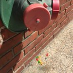 Looks like our firehose hookup is leaking gummy bears