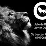 🔭 BUSCO RELACIONES PÚBLICAS 👈 🐆Zoológico Club Madrid 🍸 Las mejores condiciones!💲 +Info: 619906122 📱  ☎📑🐯 http://t.co/QdzeAWEQtR