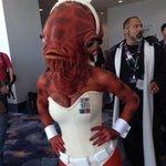 Ladies and gentlemen, my girlfriend @Jennernugen as Admiral AckBunny. #StarWars #SWCA http://t.co/QVrA0yMbbS