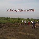 """Mari menanam #mangrove w/ Duta Lingkungan @CIREBONgoGREEN """"Memayu Kejawanan Cirebon 2015"""" http://t.co/X21DSAkxl3"""