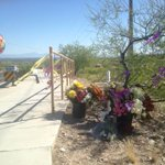 I just noticed all the flowers, ribbons and balloon set near the spot where Ann Pardo was found #tucson http://t.co/eugpqb2Ixw