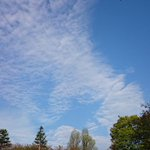 今朝の空☀ ????家人を駅まで送って外に出たら、きれいな青空。 爽やかな朝だな????✨ #東京 #空 #雲 #tokyo http://t.co/pywLoKf2Tm