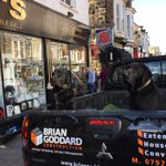"""Superb """"dogs in car"""" photo taken outside @bekselectrical #Harrogate yesterday http://t.co/HRBBDAmm6y"""