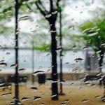 Rain on this Sunday in #Louisville @RDeLucaWX @WDRBNews I enjoyed Saturdays sunshine. http://t.co/eNAZ5LXVkk