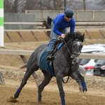 """Still in New York, El Kabeirs penultimate #KyDerby work this morning went """"awesome"""" http://t.co/gxuDX4aUxP http://t.co/kZNdsF9gQ5"""