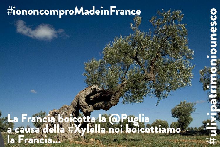 La Francia si mobilita contro l'import dalla #Puglia #Xylella  http://t.co/nCKlwn8KVr #iononcomproMadeinFrance http://t.co/Nt9gofG17d