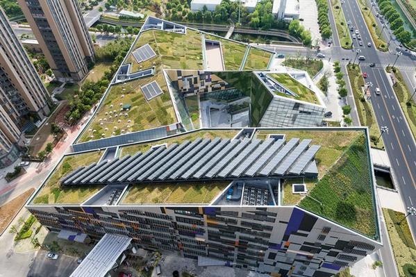 Wist u dat #zonnepanelen beter renderen op een #groendak? En is nog mooier ook... @SolarSedum @SPARK_Campus @GMJD030 http://t.co/AS2S9Xr8sD