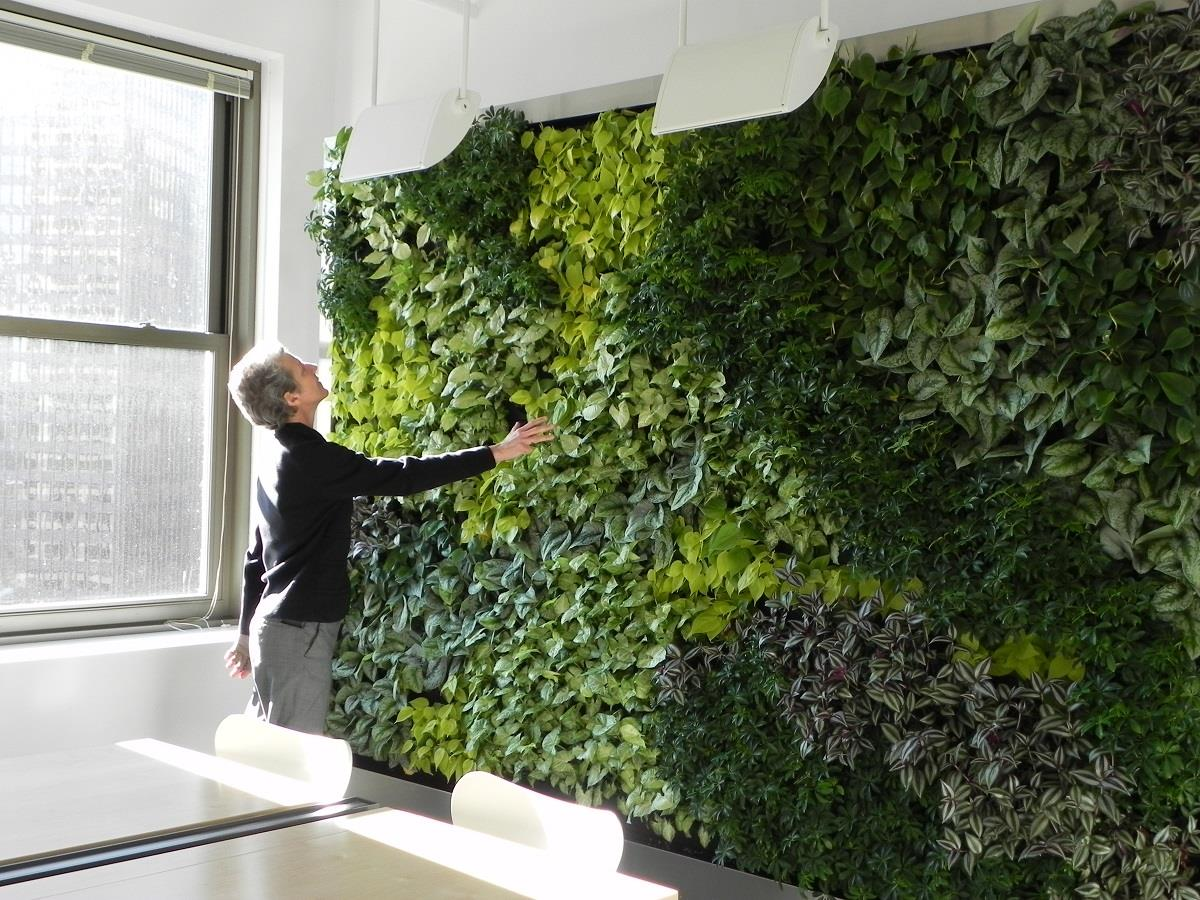 This green wall contains an artful arrangement of six different plant species #GreenWallWednesday http://t.co/Rzxuh0Dlrw