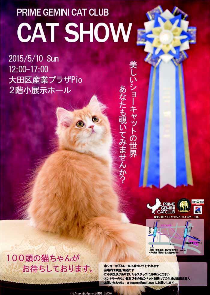 今年もやりますよぅー!キャットショーですよぅ~~~~5/10、蒲田でお待ちしておりますぅ~~~~ http://t.co/kKJC9L1cU1