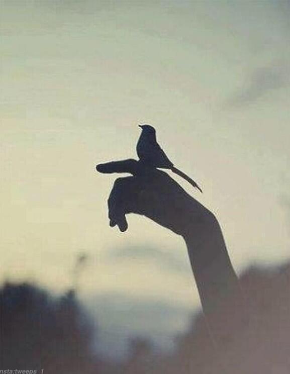 لأنك تسامحهم دائما لايشعروا بخطأهم،ولأنك تبادر دائما ينسوا،ولأنك مهتم كثيرا يهملوا؛أحيانا صفاتك الجميلة هي سبب مشاكلك http://t.co/Krql36DuzJ