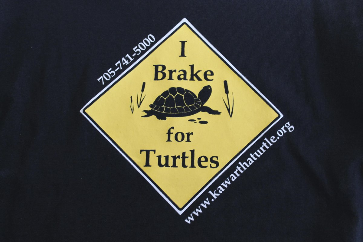 """With the warm weather approaching, please keep an eye open for turtles. Be part of the """"I Brake for Turtles"""" club! http://t.co/aEzIvQa6eV"""