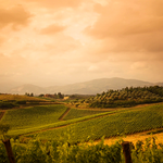 RaiExpo : I volti della Toscana http://t.co/UMDuIzEYBw http://t.co/v7VyZ8zhWc (via Twitter http://t.co/mOAiKvW8s8) http://t.co/tSKbNapC4j