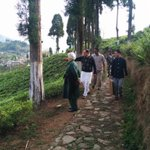 RT @jagdishshetty: Dr @Swamy39 with his wife Dr Roxna on his morning walk near Darjeeling in a Tea Garden http://t.co/Tlu7P805m3