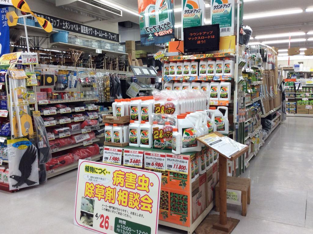 ホームセンターにて。 世界一の遺伝子組換え・枯葉剤企業モンサント社の【ラウンドアップ】コーナーが特設されている。 メーカー専門員が来る相談会もあるんだと。 こうやってなんにも考えない大衆の日常生活に入り込んでくるんだ。これ日本だぜ? http://t.co/Os5Do1Do3A