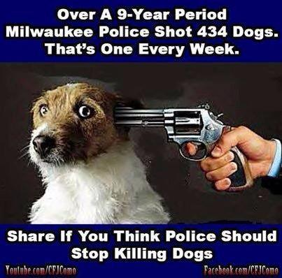 A post I saw on FB.Why's it so hard 4 US police officers 2 be more careful w/their guns?People AND animals? #gunsense http://t.co/9kyjQHMwRK