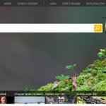 1 in 5 people now use Bing — but does anyone ever say,