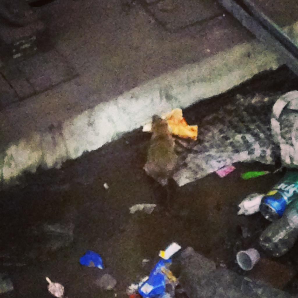 This rat eating a slice of pizza on the subway tracks is, hands down, the most New York thing I have ever seen