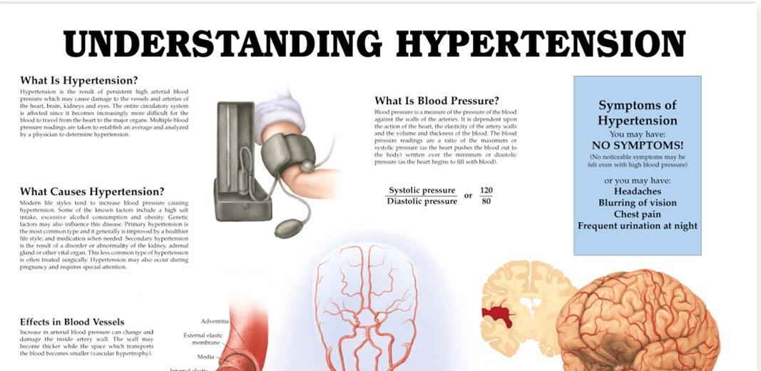 Understanding Hypertension Infographic http://t.co/sdsXSUFJl1 http://t.co/Nz9brarbEp