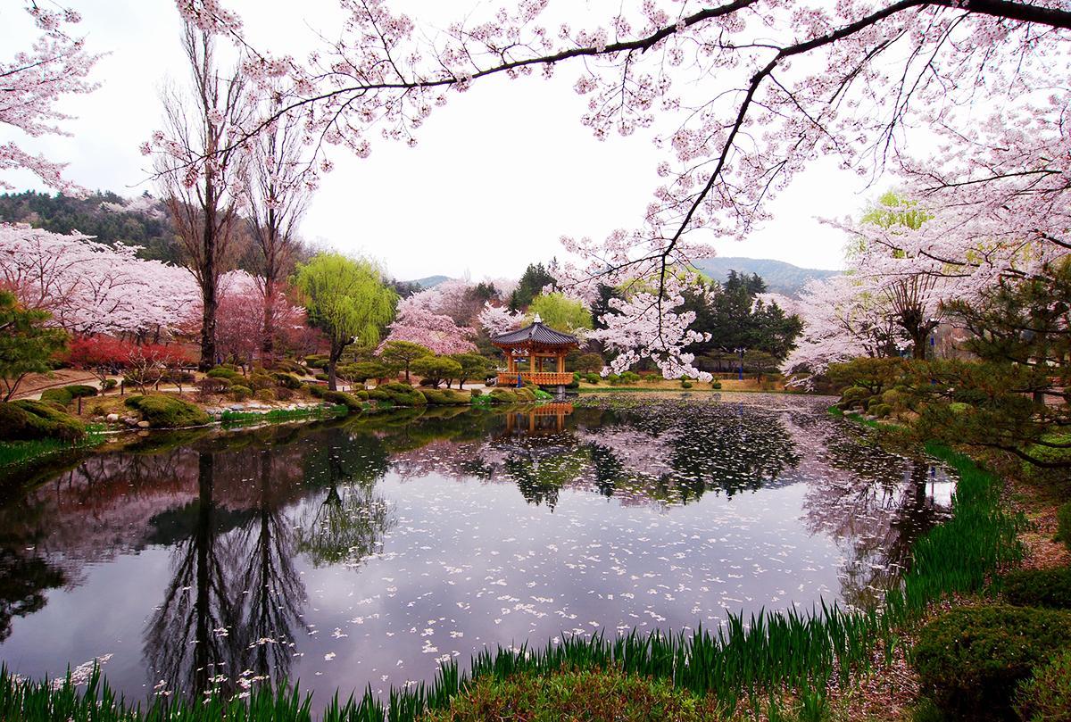 #봄여행 세계적인 역사도시 #경주 에도 봄이 왔습니다. 호수를 둘러싼 산책로와 자전거길이 아름다워 봄나들이코스로 손꼽히는 이곳, #보문호 를 바라보며 오늘도 #설레는여행 을 떠나봐요 http://t.co/CAk1wE9mox