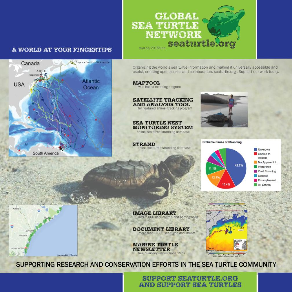 Most bang for ur $$$? Support http://t.co/vrDWC7zjf0 + help turtles and orgs around the world http://t.co/hqhFASBPIS http://t.co/m3FRlTvLir