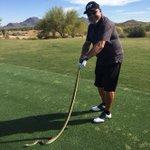 Yep. It's snake season in Arizona. Meet Mr. Bull snake!!