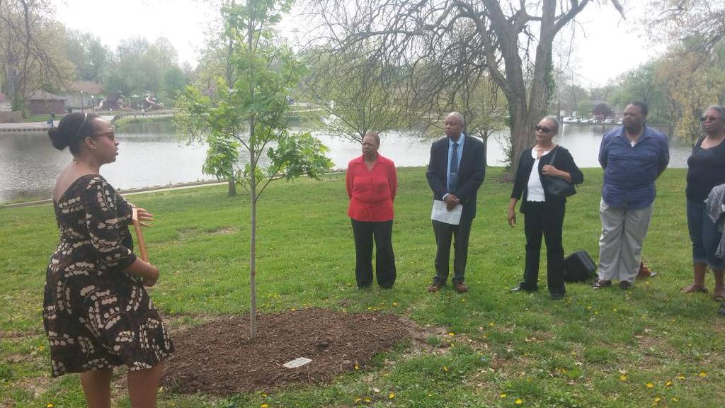 We can't even mourn RT @steenfox: Come on RT @BlackInformant: Mike Brown tree dedicated yesterday,  decimated today http://t.co/VhpfM72twA