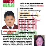 #AlertaAmber Eric Sánchez Ortiz de 7 años sustraído por su madre en Tulancingo http://t.co/21xjHtLpLK