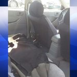 Dog rescued from 123-degree car at Bel Air Swap Meet, Fontana police say http://t.co/xYD1oa4igo http://t.co/k2CbsPDPw2