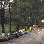 Reserve Rd Artarmon closed by huge fallen tree #weather #sydneytraffic http://t.co/XGhk2efJ2J