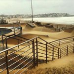 Bondis skate park is a sand pit! Details on the wild storm hammering Sydney & Newcastle here: http://t.co/hPABWrtuTw http://t.co/Yalhi89m6V