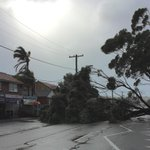 More than 100 schools have been closed as wild weather continues to lash NSW http://t.co/YhREsSRT72 #nswstorms http://t.co/qbNZnVQPw0