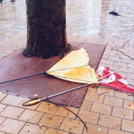 Here Are Some Of The Saddest Umbrellas In Sydney http://t.co/Tu8FX9rSDI via @lanesainty http://t.co/X9JbkiCMgV