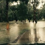 UPDATE: Three killed, homes washed away in #Dungog as cyclonic 135kph winds batter #NSW http://t.co/Ka9jMFm0po http://t.co/4ItvUiGEhQ