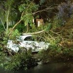 Insurers have received over 5500 claims from policyholders due to severe weather. http://t.co/dmYYqm9te8 #NSWweather http://t.co/wdYRIBb78d