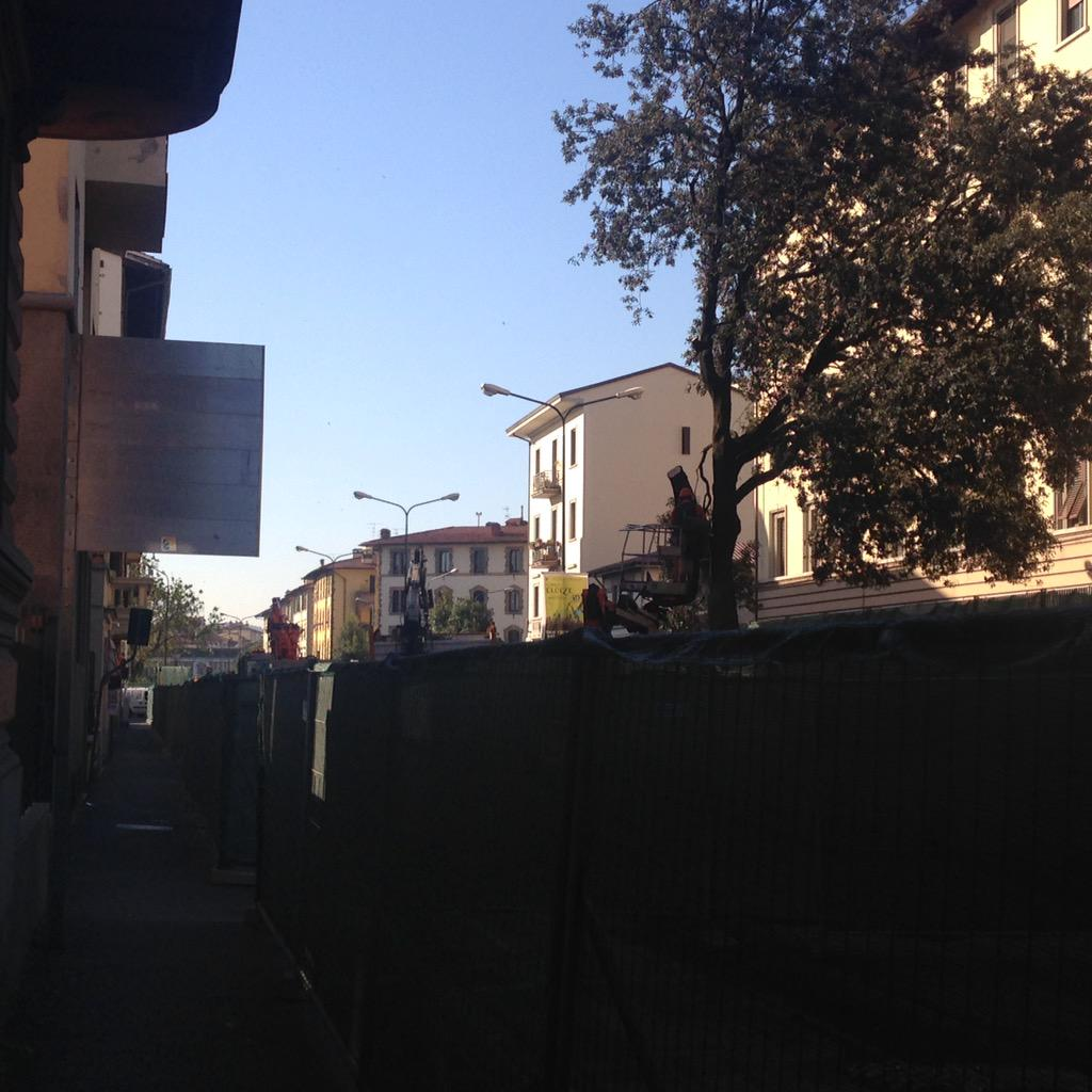 "RT @NiccoloBianco: Iniziata potatura alberi via Gianni @ferraro_filippo @Lavori_Tram_Fi #tramvia #Firenze #lavori http://t.co/lo5IgO1PRS<a target=""_blank"" href=""http://t.co/lo5IgO1PRS""><br><b>Vai a Twitter<b></a>"