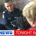 96 year old thanks police dog Rumble after he came to her rescue at a home invasion. @GenoveseMichael in #9NewsAt6 http://t.co/AKHusCUFYq
