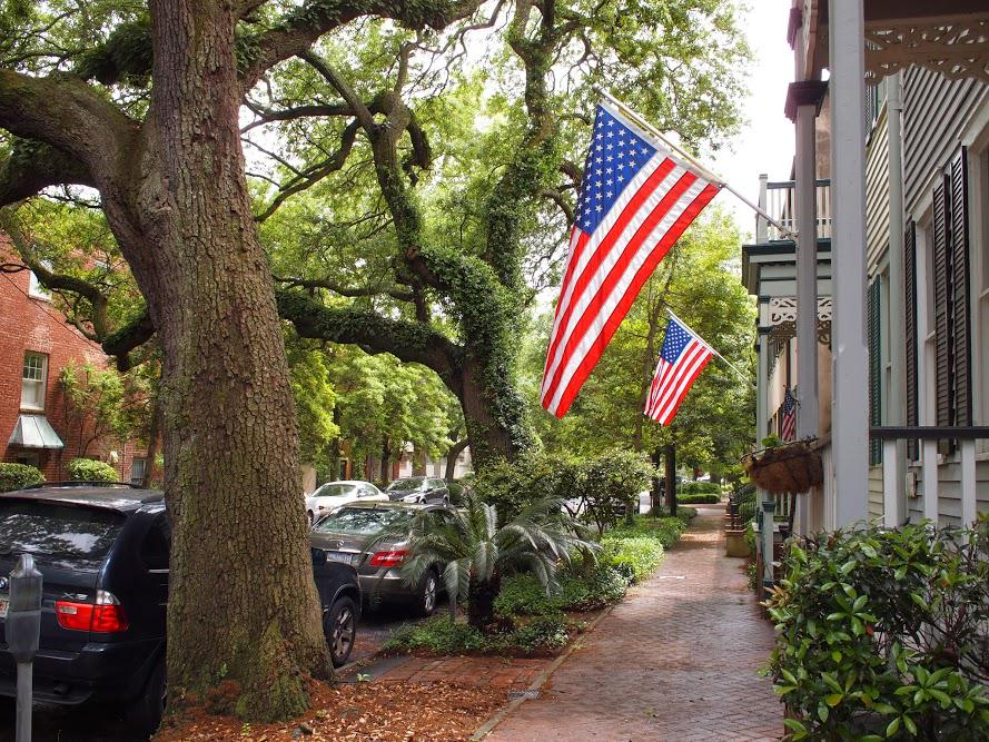 This is what #Savannah is like. http://t.co/CJTf7BWrsG