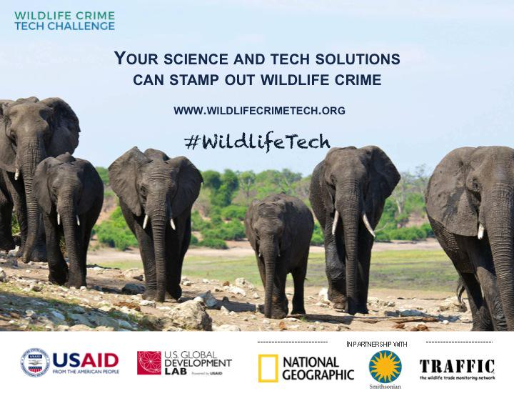 Got a bright idea to stop #WildlifeCrime? Up for the Tech Challenge? http://t.co/3T5Yki8FzE @USAID @wildlife_tech http://t.co/S4L4rZVzvG