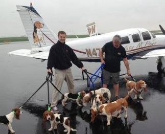 PNP Pilot Scott Messinger - Saving 7 Bassets in 1 Freedom Flight. See the Basset painting on his Plane? @pamgrier http://t.co/r5XYUlCPfG