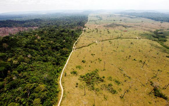 Using Satellites To Stop Forest Destruction in its Tracks http://t.co/fBV5ARcLCR An Earth Day special by @klintron http://t.co/eoRTmWd9o8