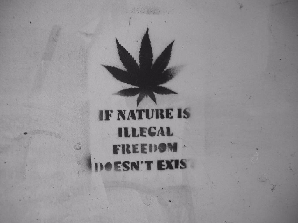 RT @MattMateUK: @joerogan @eddiebravo  Banksy http://t.co/9XoudO6gwZ