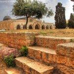 الجامع القبلي في #المسجد_الأقصى المبارك #فلسطين http://t.co/UffJf8rPp9