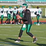Teach me how to Doege? Fear the beard? Not any more. #Riders cut QB Seth Doege. Glenn, Sunseri sealed his fate #cbcsk http://t.co/1vkzSLoYcE