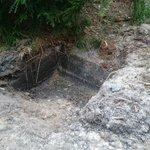 Langs een bospad op de Veluwe diverse nieuw gegraven kuilen gevonden. Blijkt biotoopverbetering voor oa wild zwijn http://t.co/rFjWHz7GGE