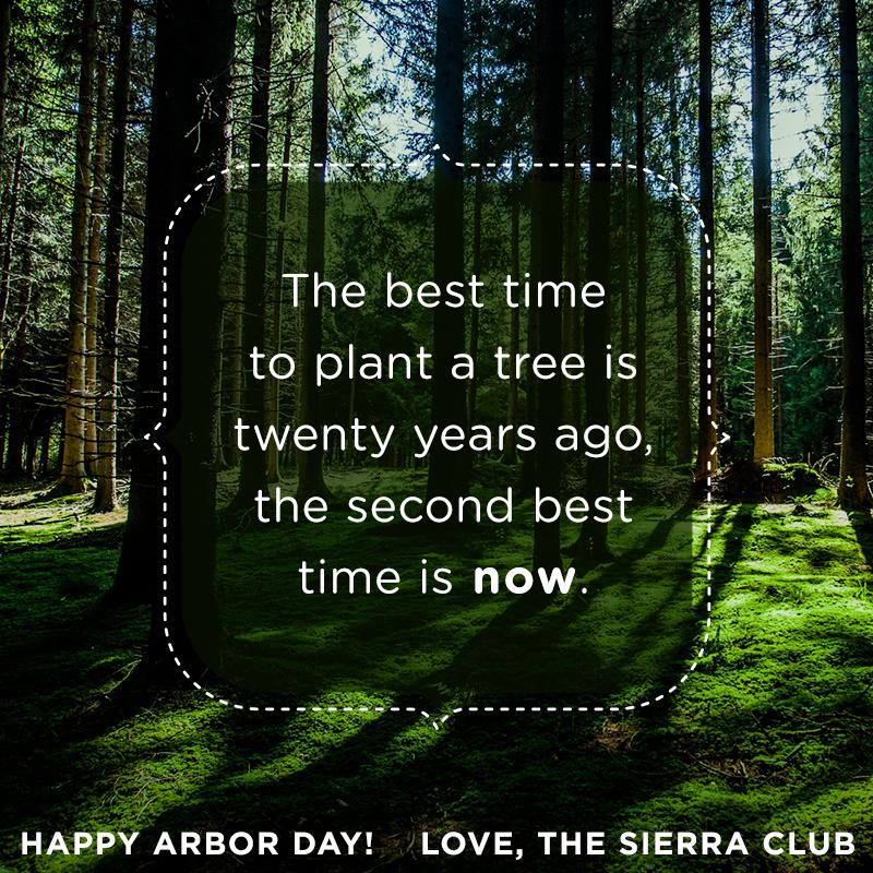 Happy Arbor Day! http://t.co/kUS3e46jII