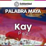 """#NuestraLengua #MayasHablantes— Del diccionario #Maya- #Español, compartimos el significado de la palabra """"#Kay"""" http://t.co/Q9lh7jOLOa"""