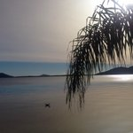 Cinzas de vulcão chileno chegam a SC. A foto mostra a Lagoa da Conceição, na Capital. http://t.co/HQ0LOOop8J http://t.co/3wodeA5awx