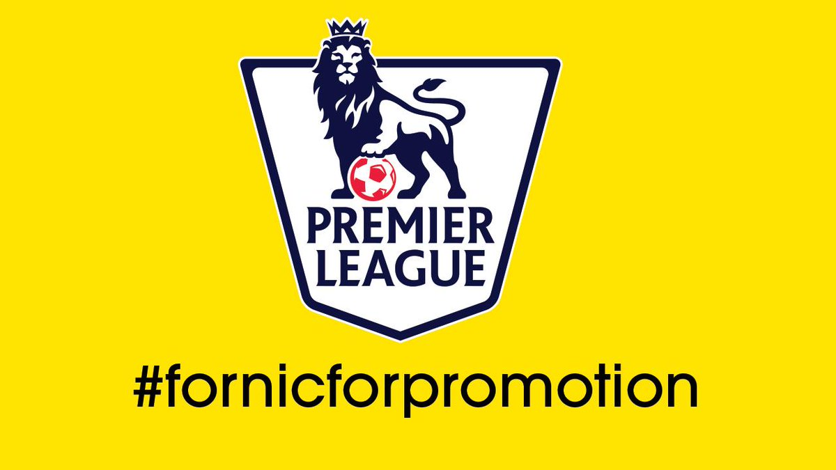 We are Premier League!!! #watfordfc #fornicforpromotion http://t.co/ZPanGWQzNx