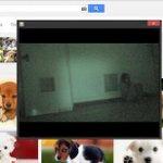 assistindo filme de terror no computador http://t.co/wOxshUT6hI